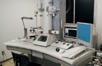 透過電子顕微鏡